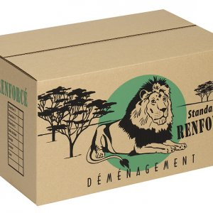 sherpabox-carton-demenagement